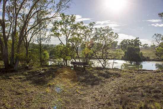 Platypus Lookout - Lake Inverell