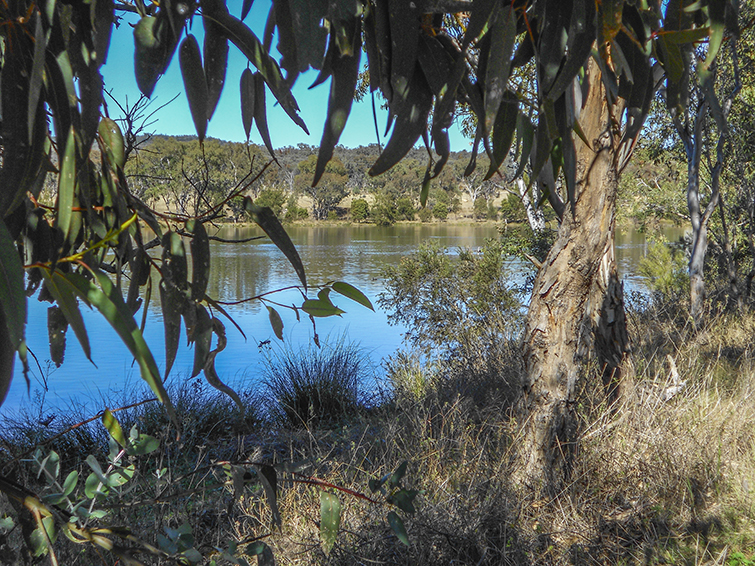 Lake Inverell - The Sapphire City